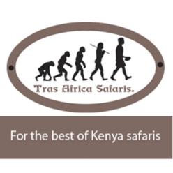 Tras Africa Safaris